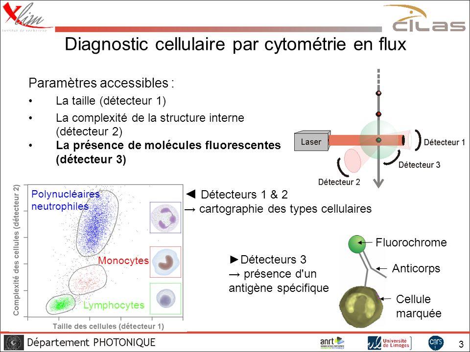 Diagnostic cellulaire par cytométrie en flux