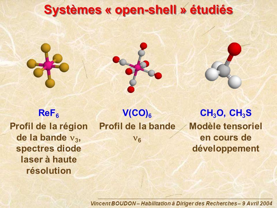Systèmes « open-shell » étudiés