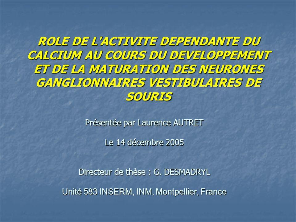 ROLE DE L ACTIVITE DEPENDANTE DU CALCIUM AU COURS DU DEVELOPPEMENT ET DE LA MATURATION DES NEURONES GANGLIONNAIRES VESTIBULAIRES DE SOURIS