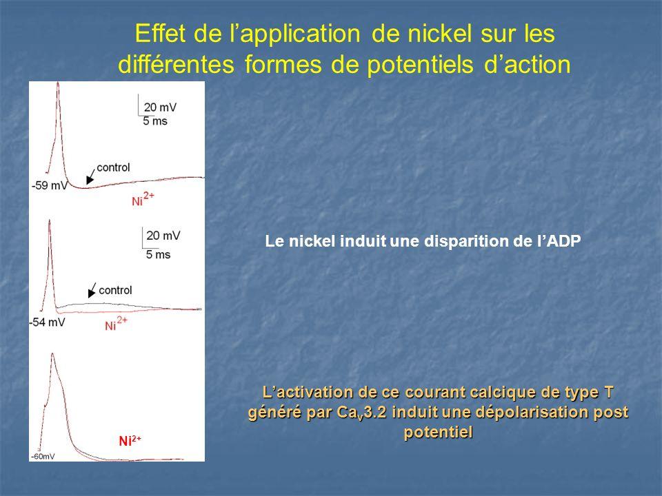 Effet de l'application de nickel sur les différentes formes de potentiels d'action