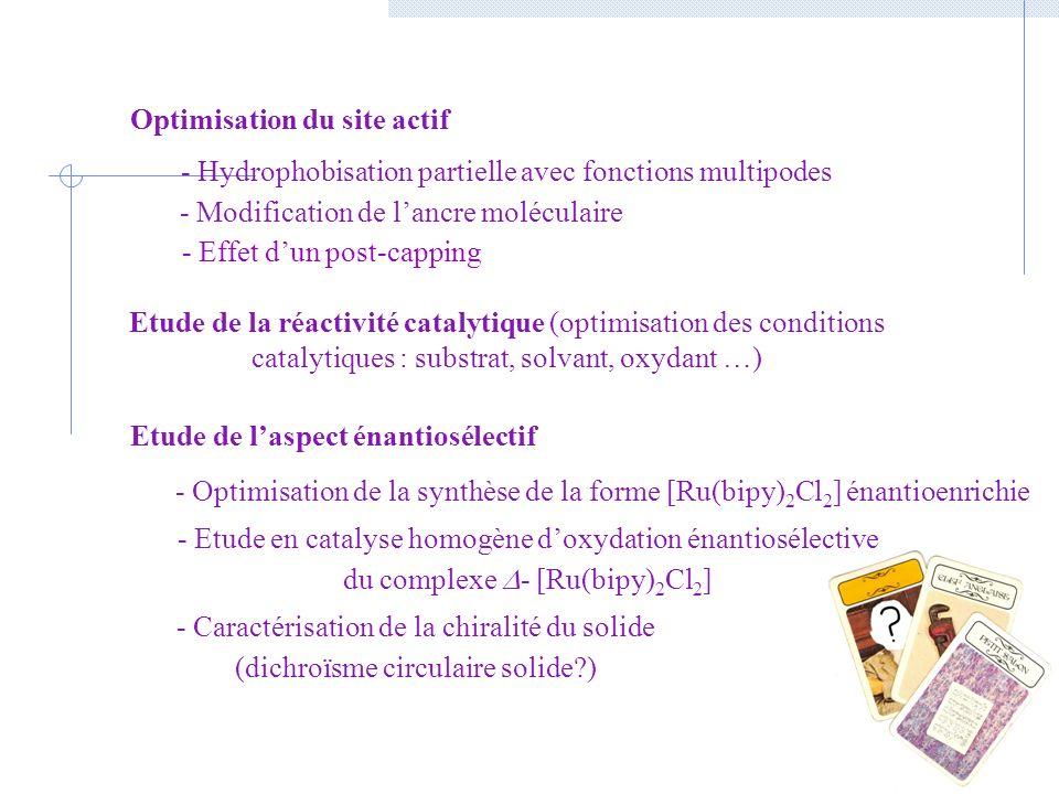 Optimisation du site actif Etude de l'aspect énantiosélectif
