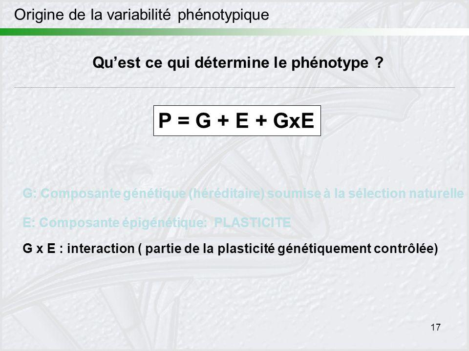 P = G + E + GxE Origine de la variabilité phénotypique