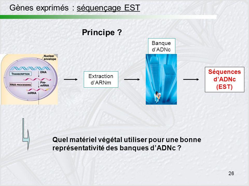 Séquences d'ADNc (EST)