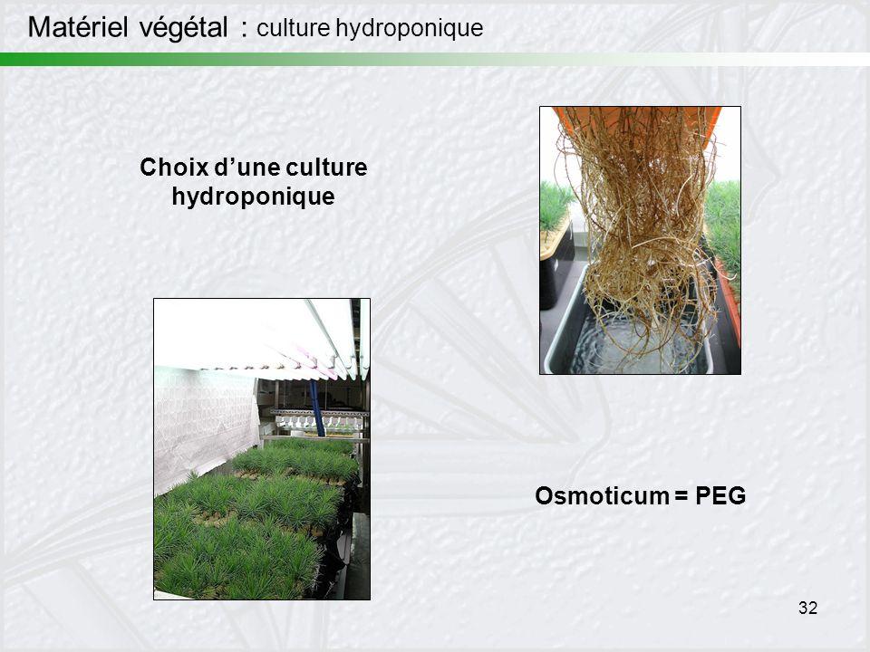 Choix d'une culture hydroponique