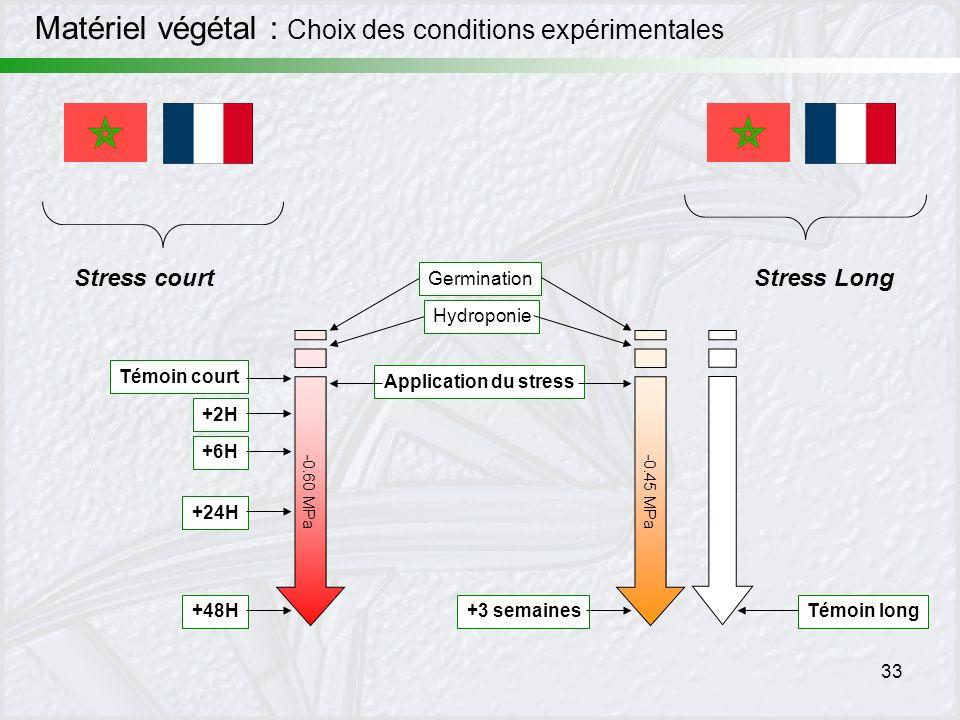 Matériel végétal : Choix des conditions expérimentales