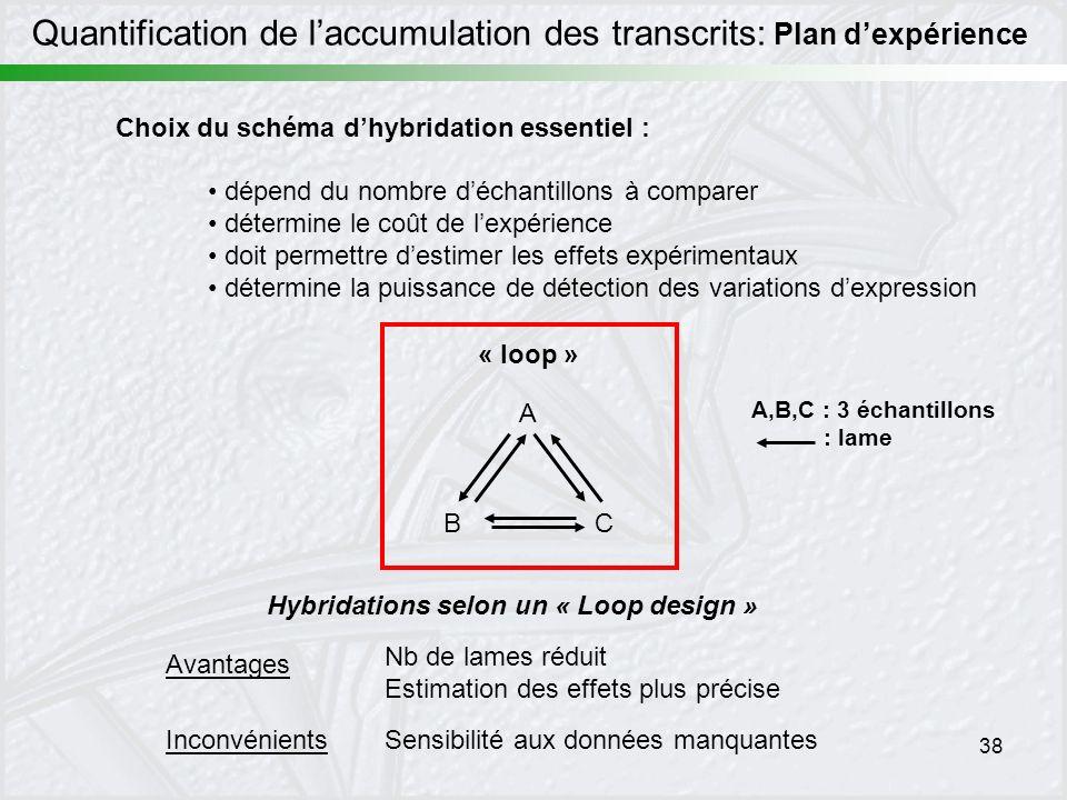 Quantification de l'accumulation des transcrits: Plan d'expérience
