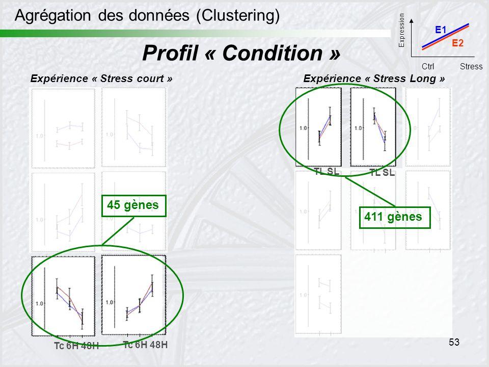 Profil « Condition » Agrégation des données (Clustering) 45 gènes