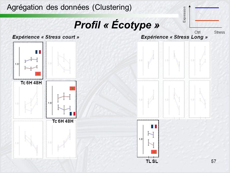 Profil « Écotype » Agrégation des données (Clustering)
