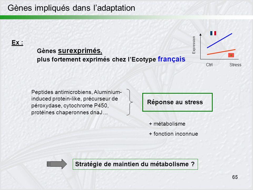Gènes impliqués dans l'adaptation