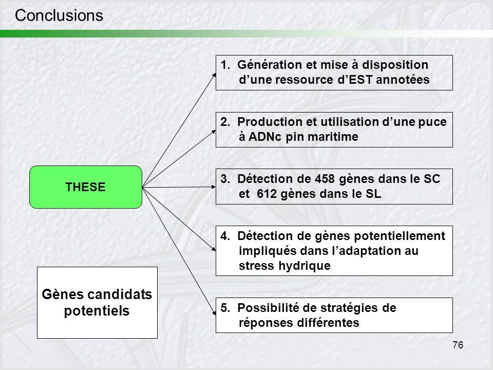Conclusions Gènes candidats potentiels