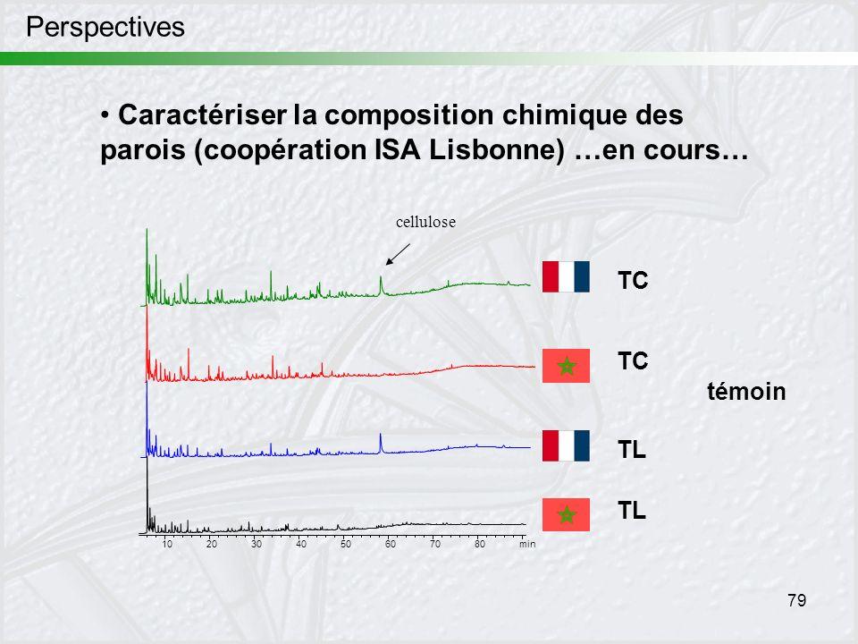 Perspectives Caractériser la composition chimique des parois (coopération ISA Lisbonne) …en cours… cellulose.