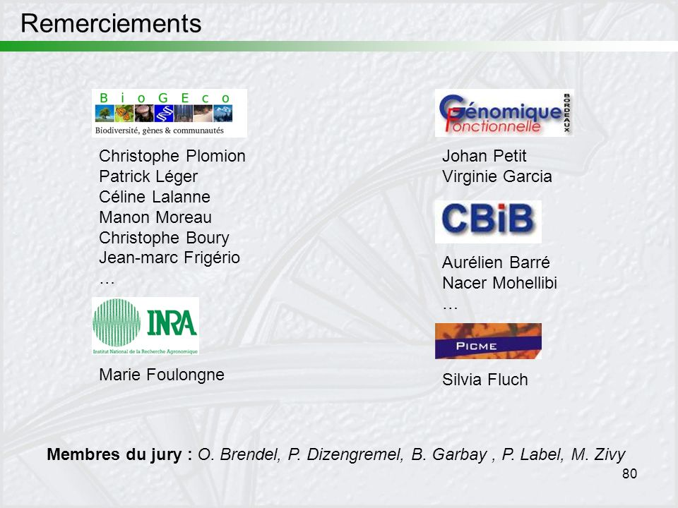 Remerciements Christophe Plomion Patrick Léger Céline Lalanne