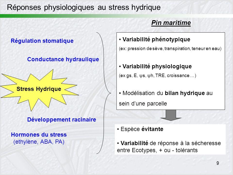 Réponses physiologiques au stress hydrique