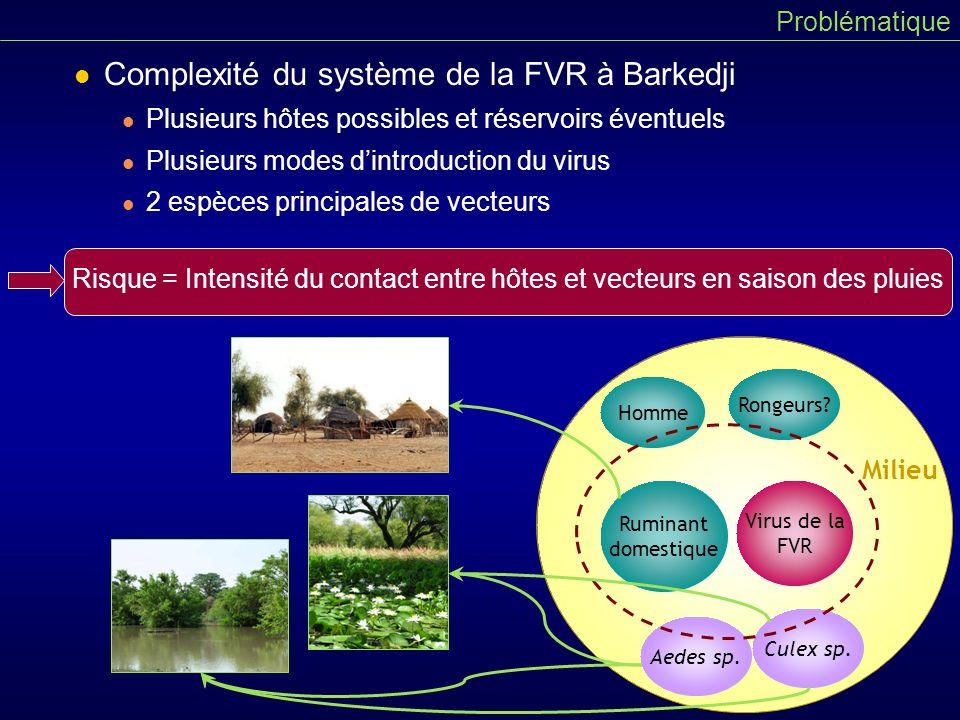 Complexité du système de la FVR à Barkedji