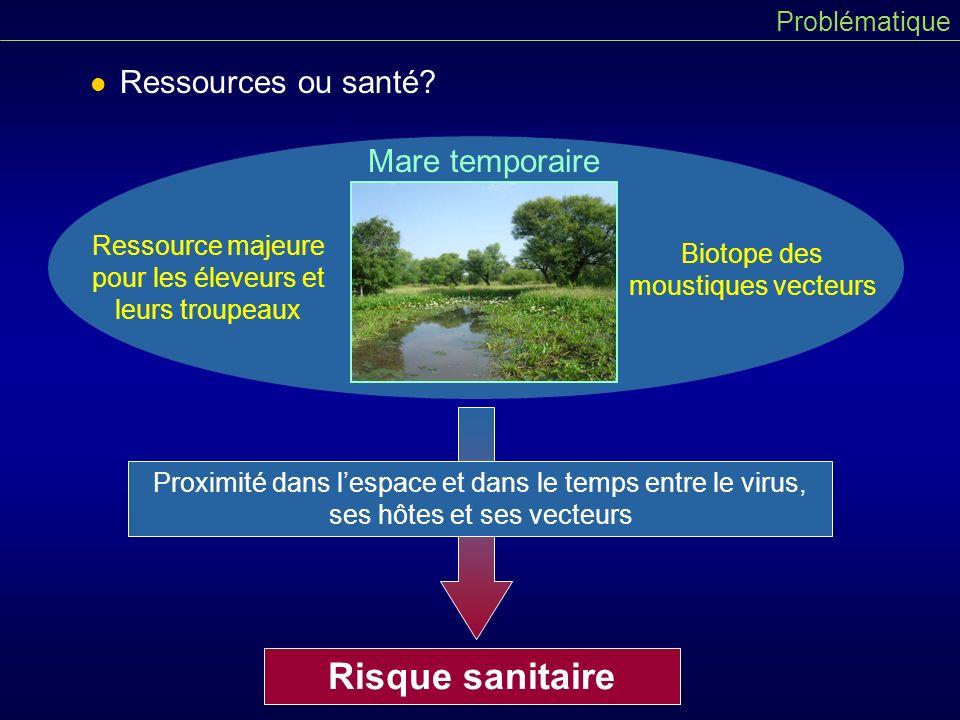 Risque sanitaire Ressources ou santé Mare temporaire Problématique