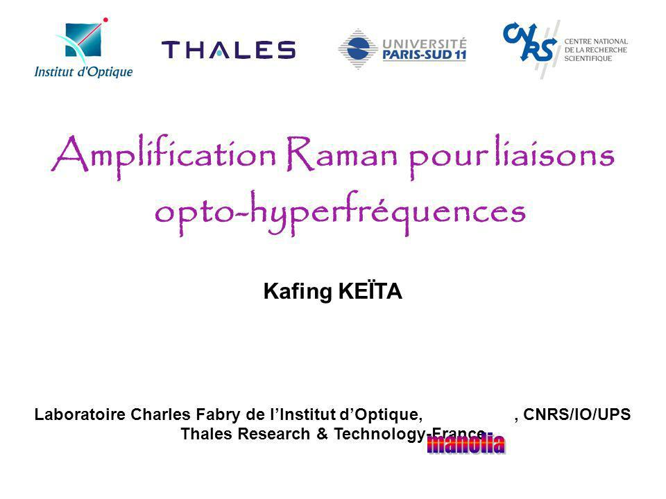 Amplification Raman pour liaisons opto-hyperfréquences