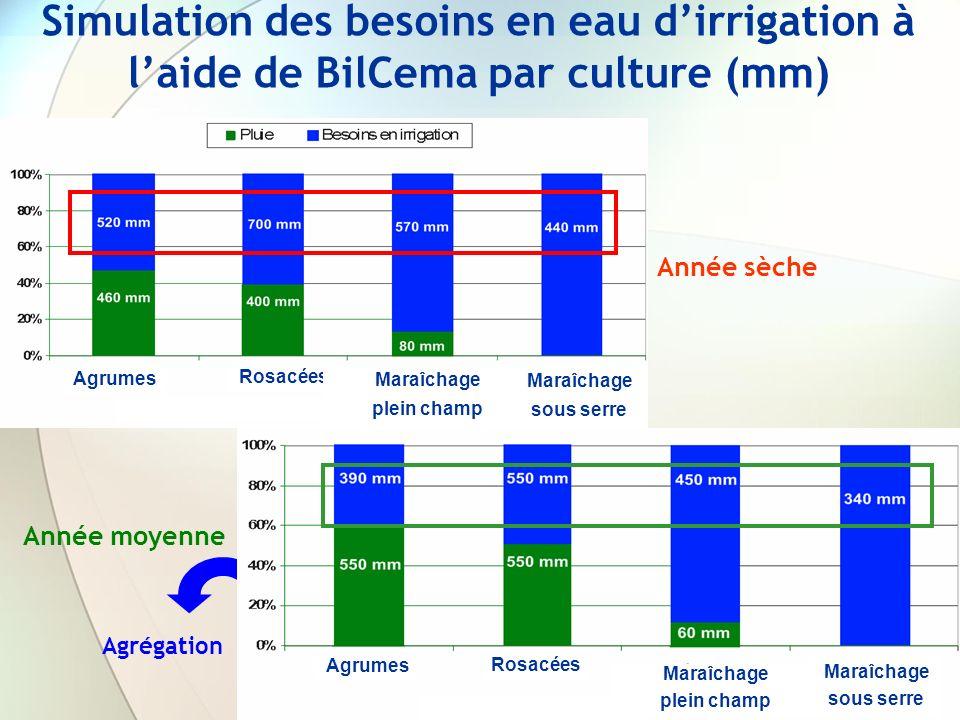 Simulation des besoins en eau d'irrigation à l'aide de BilCema par culture (mm)