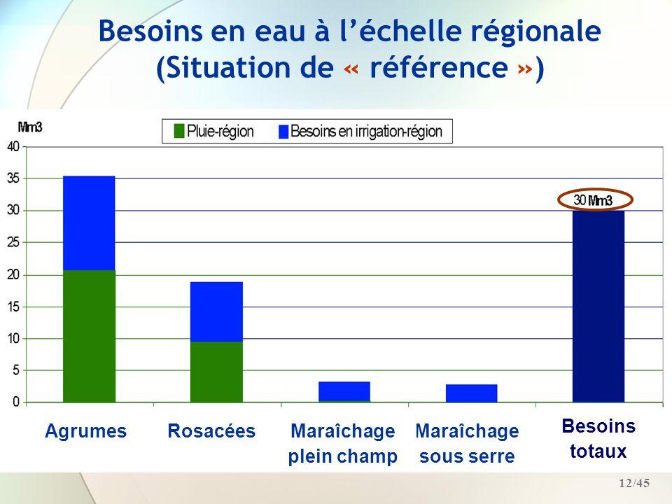 Besoins en eau à l'échelle régionale (Situation de « référence »)