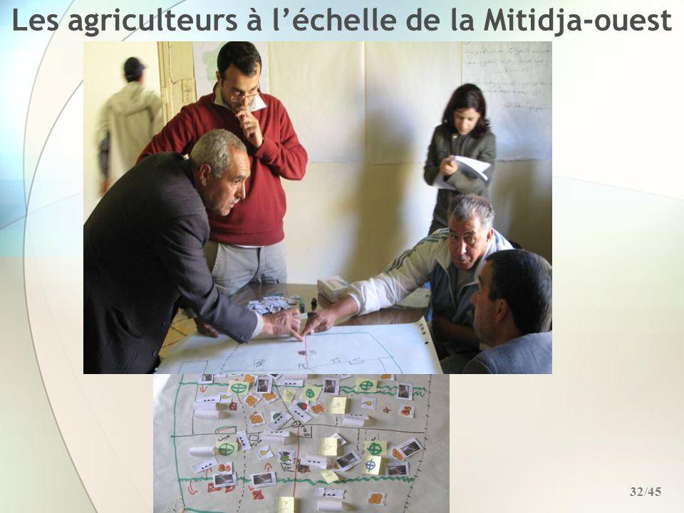 Les agriculteurs à l'échelle de la Mitidja-ouest