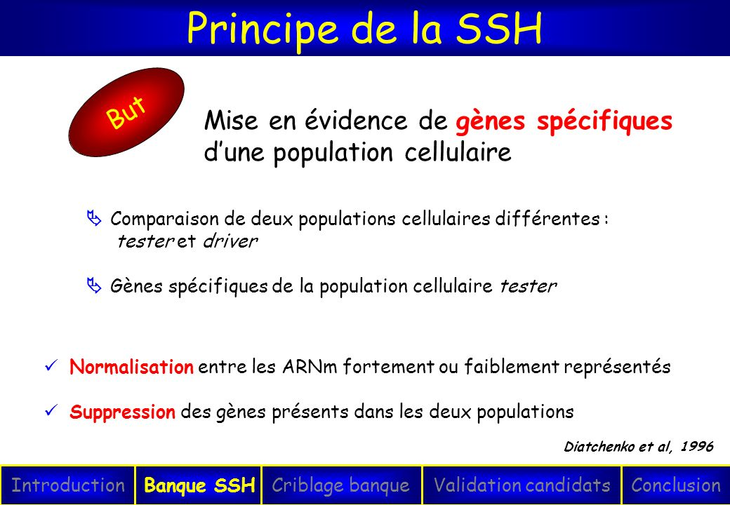 Principe de la SSH But. Mise en évidence de gènes spécifiques d'une population cellulaire.