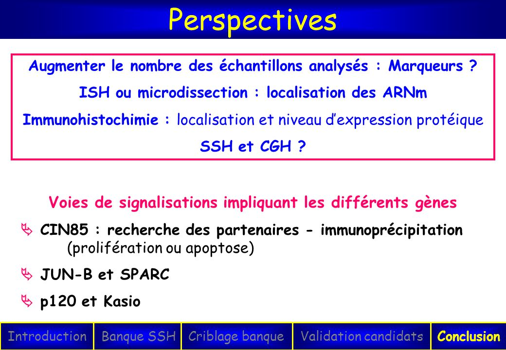 Perspectives Voies de signalisations impliquant les différents gènes