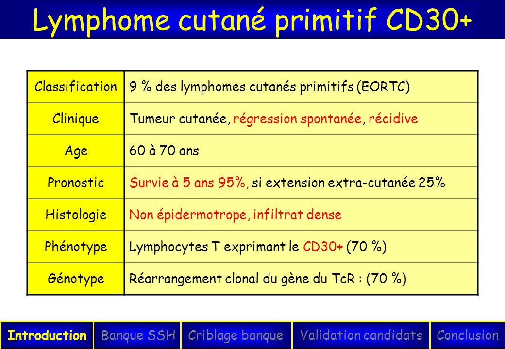 Lymphome cutané primitif CD30+