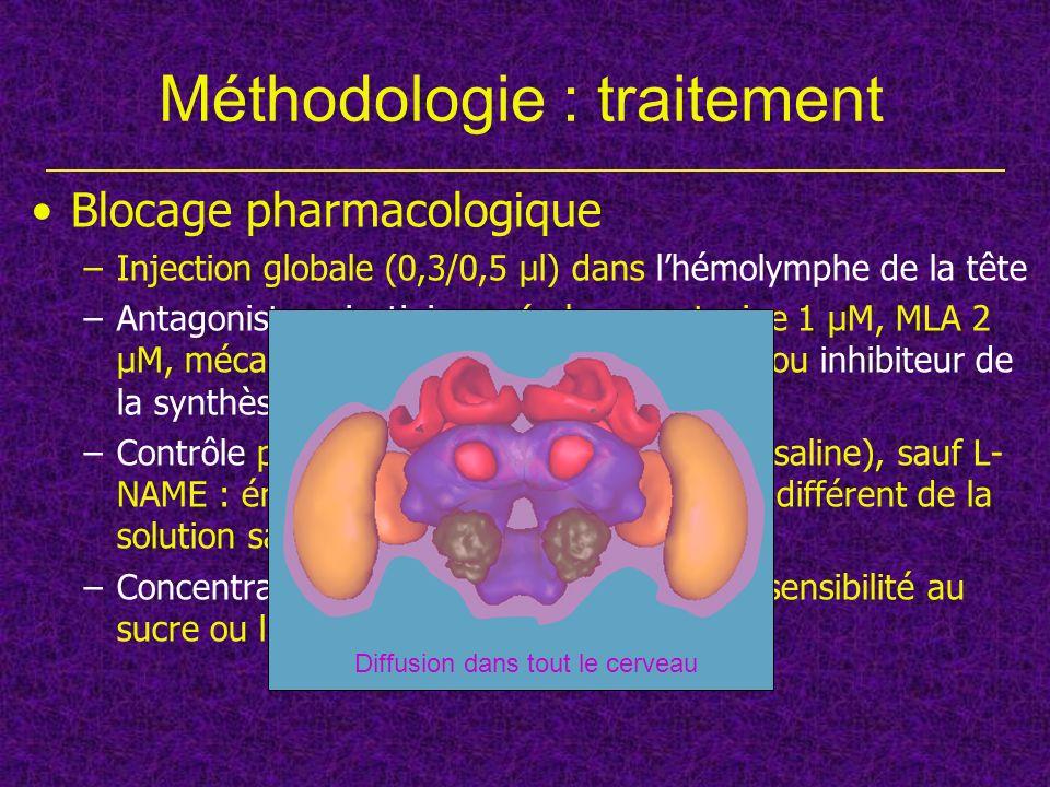 Méthodologie : traitement