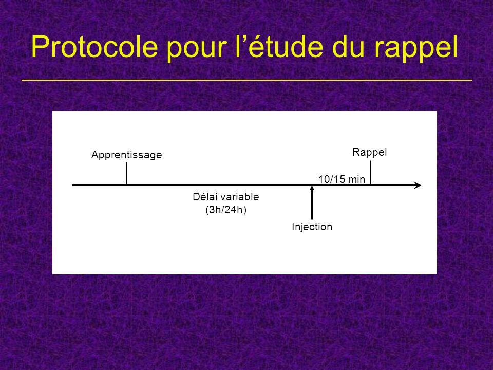 Protocole pour l'étude du rappel