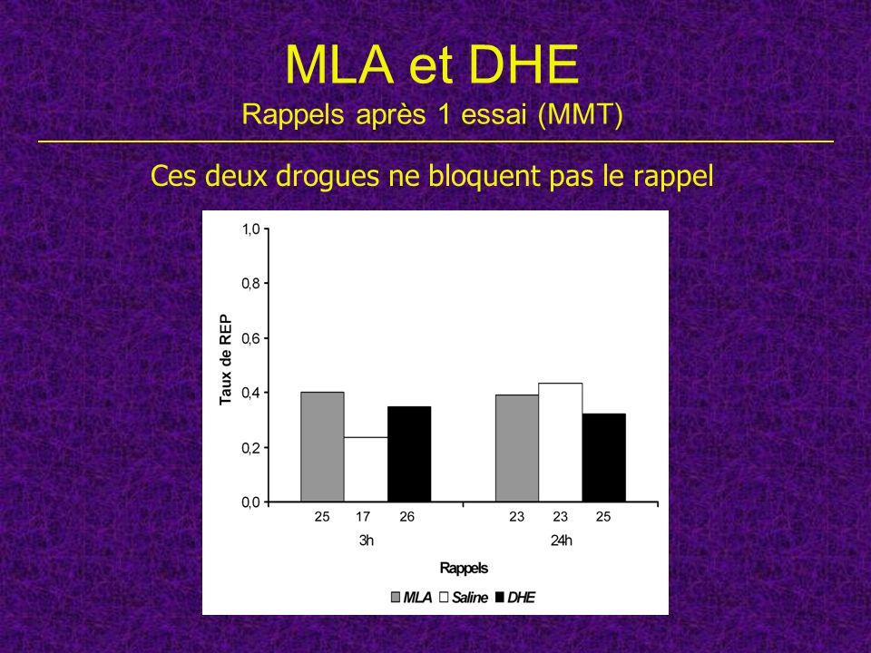 MLA et DHE Rappels après 1 essai (MMT)