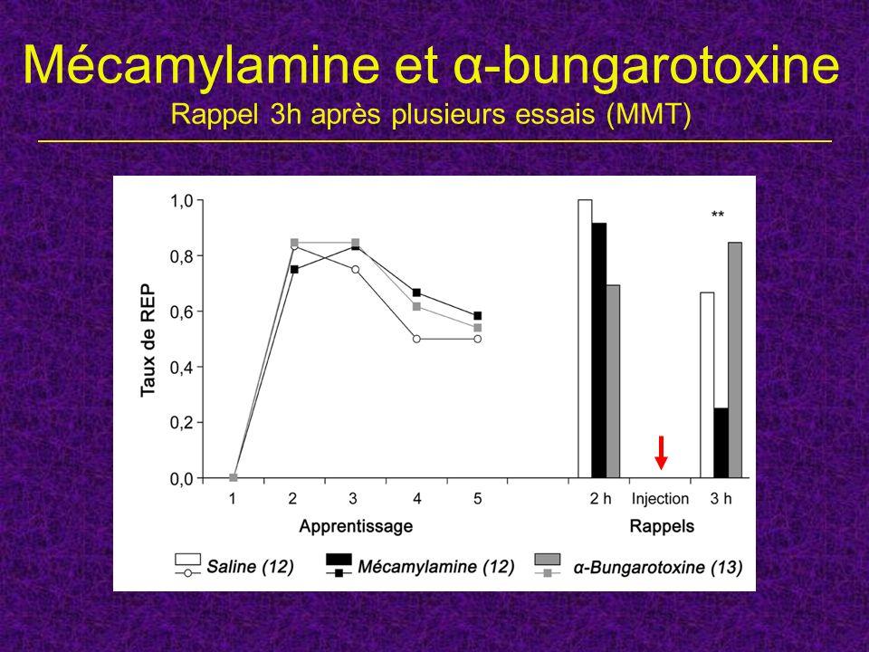 Mécamylamine et α-bungarotoxine Rappel 3h après plusieurs essais (MMT)