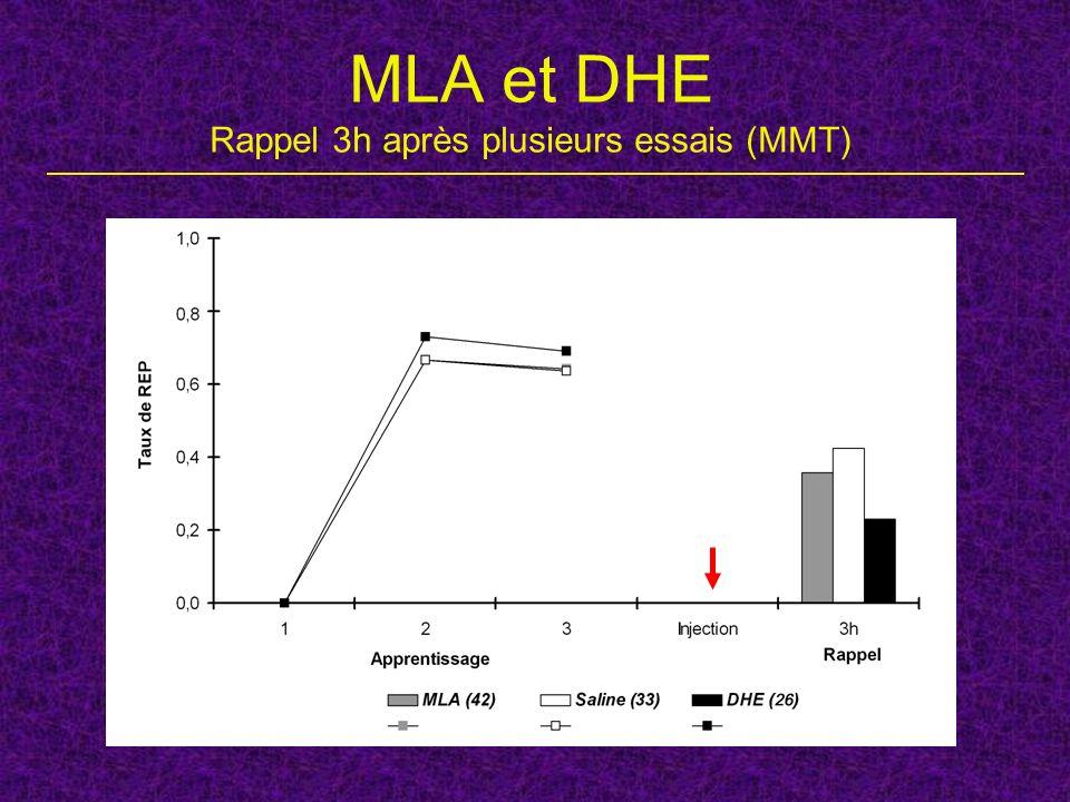 MLA et DHE Rappel 3h après plusieurs essais (MMT)