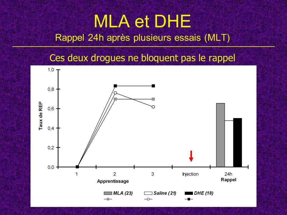MLA et DHE Rappel 24h après plusieurs essais (MLT)