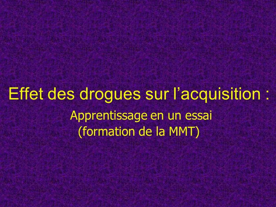 Effet des drogues sur l'acquisition : Apprentissage en un essai (formation de la MMT)