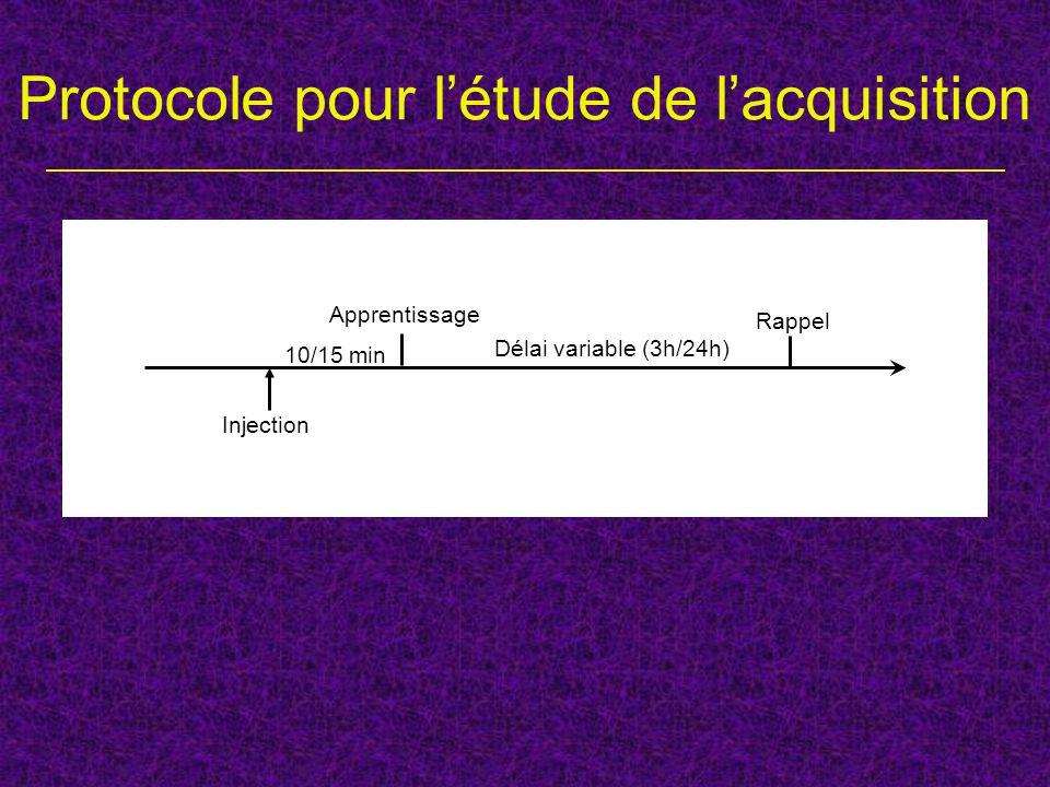 Protocole pour l'étude de l'acquisition