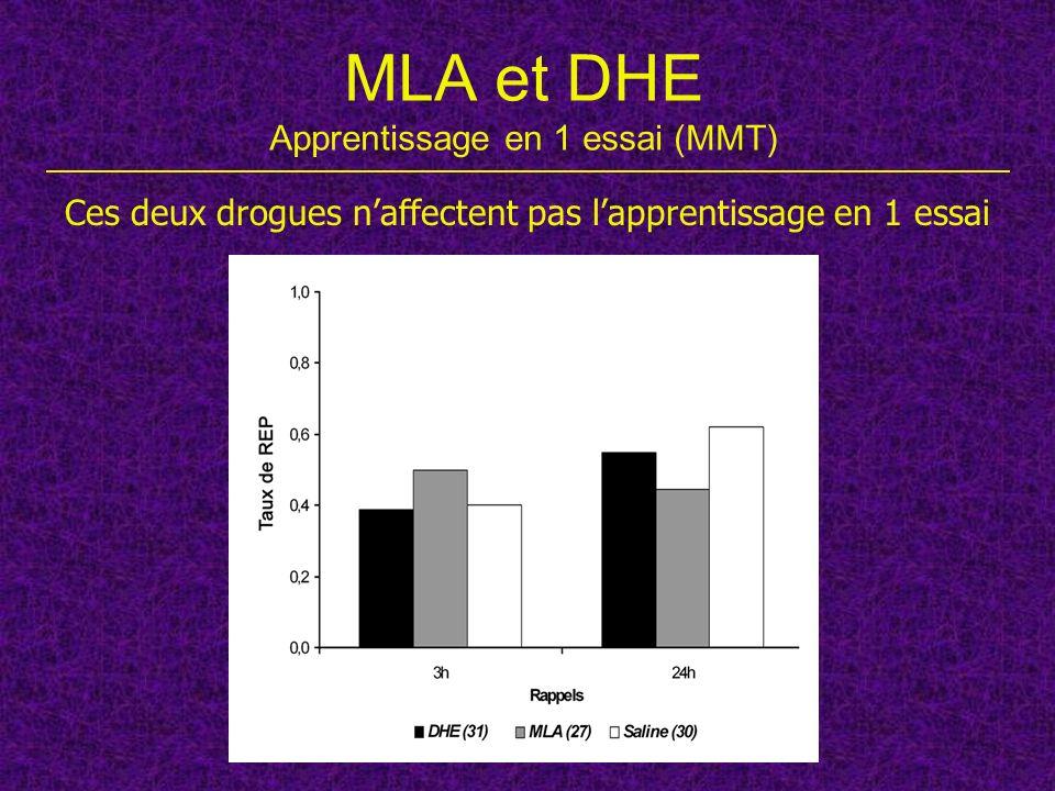 MLA et DHE Apprentissage en 1 essai (MMT)