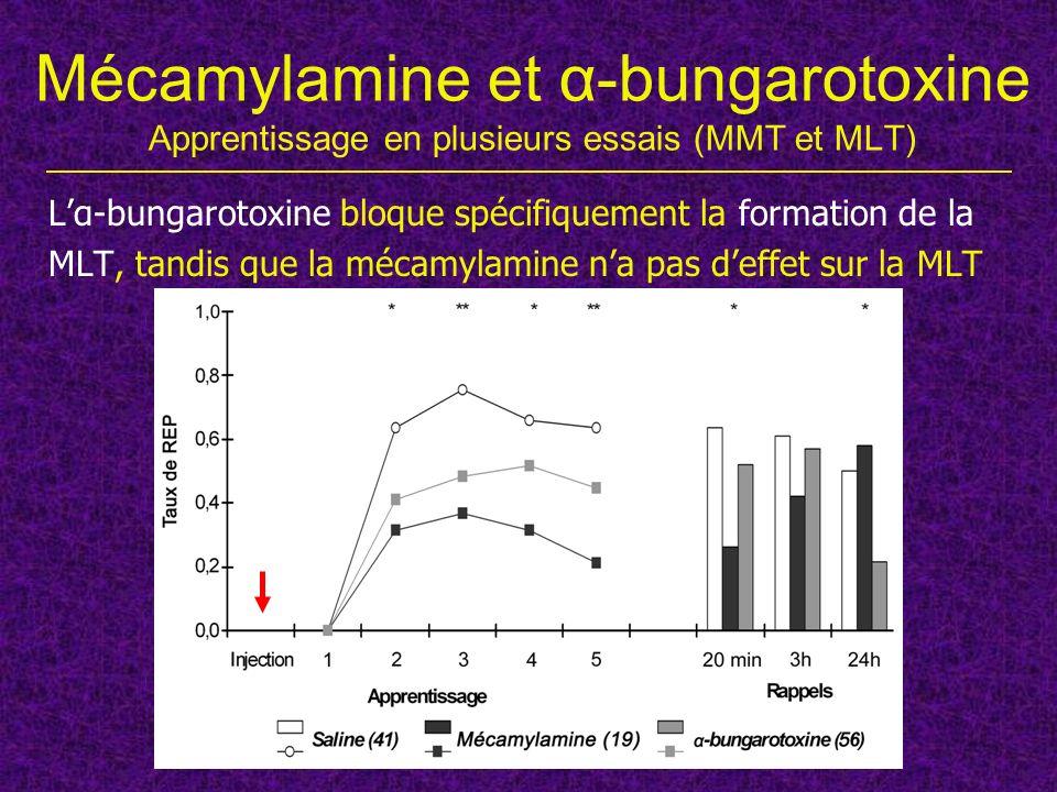 Mécamylamine et α-bungarotoxine Apprentissage en plusieurs essais (MMT et MLT)