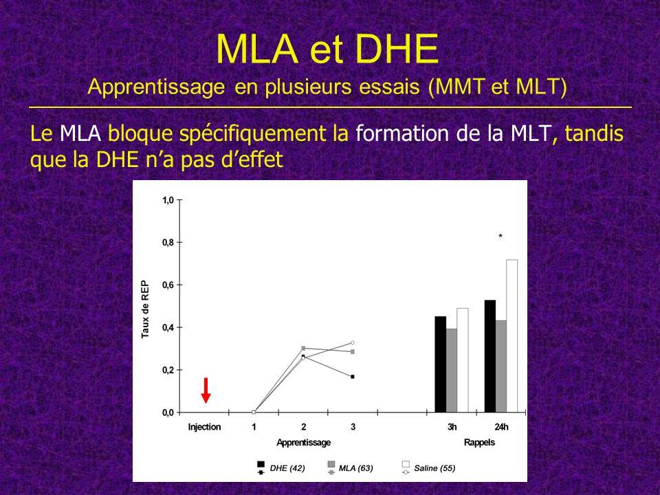 MLA et DHE Apprentissage en plusieurs essais (MMT et MLT)