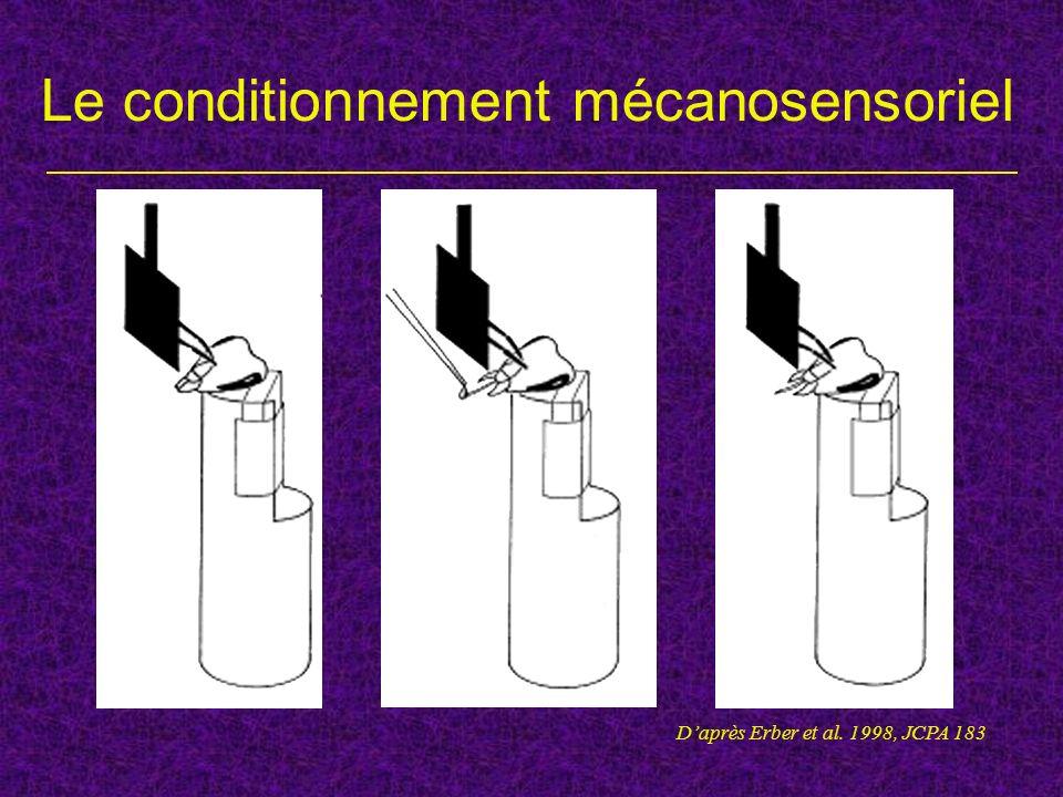 Le conditionnement mécanosensoriel