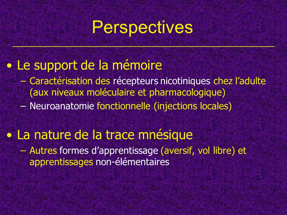 Perspectives Le support de la mémoire La nature de la trace mnésique