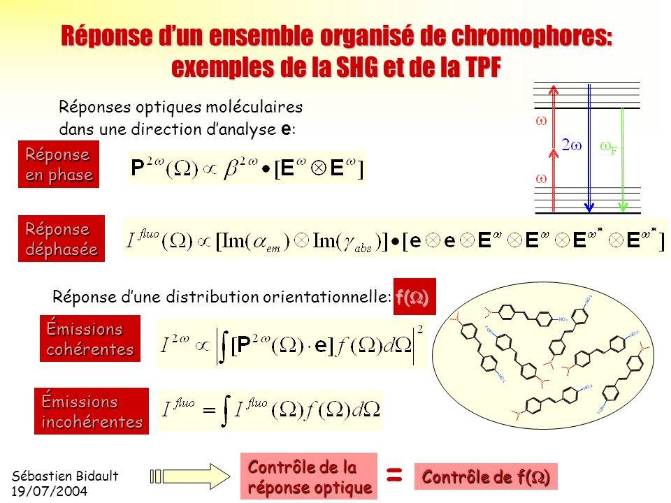 Réponse d'un ensemble organisé de chromophores: exemples de la SHG et de la TPF