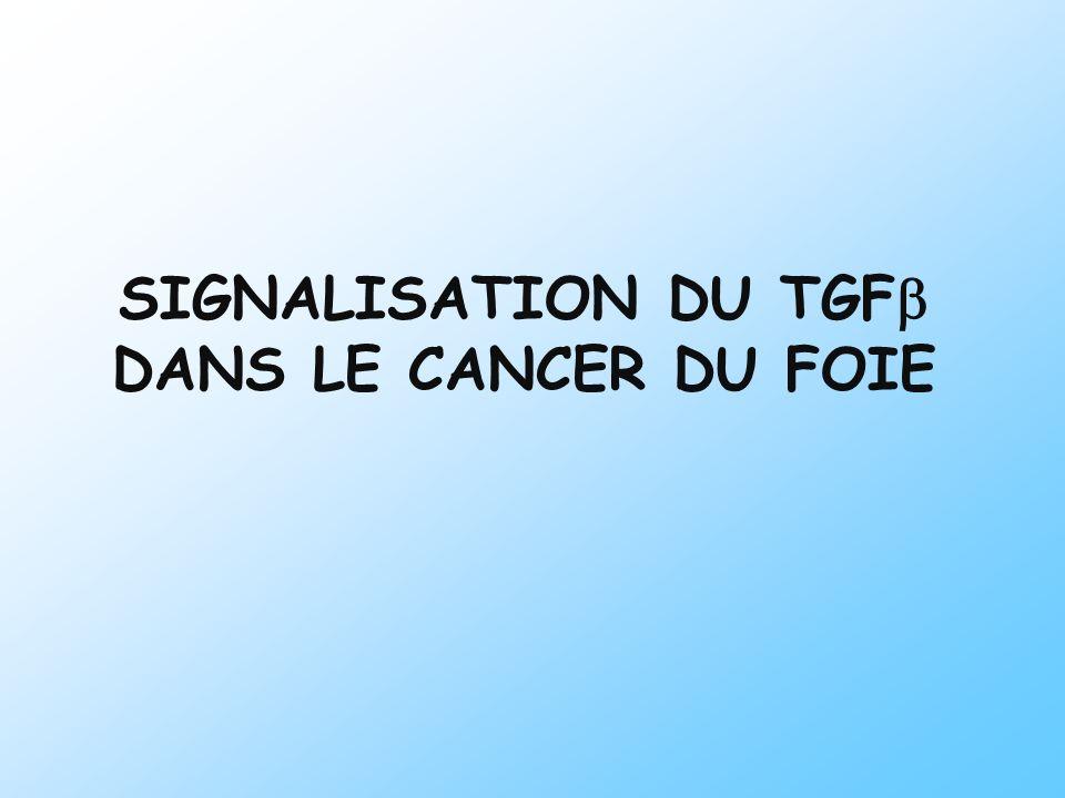 SIGNALISATION DU TGFb DANS LE CANCER DU FOIE