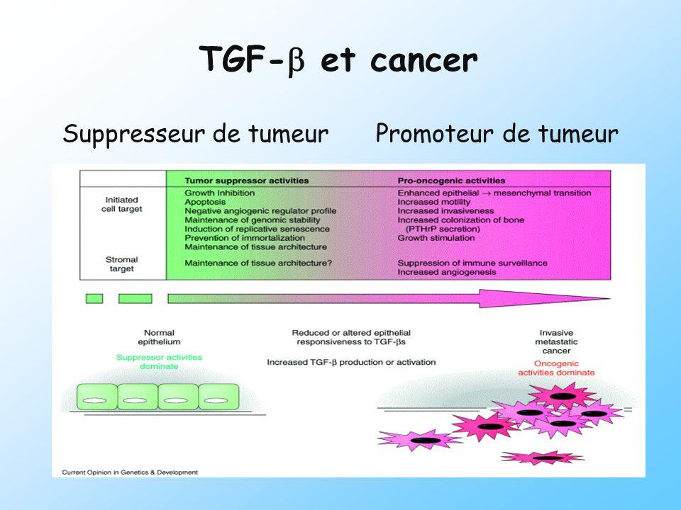 TGF-b et cancer Suppresseur de tumeur Promoteur de tumeur