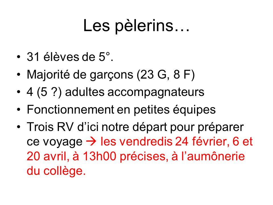 Les pèlerins… 31 élèves de 5°. Majorité de garçons (23 G, 8 F)