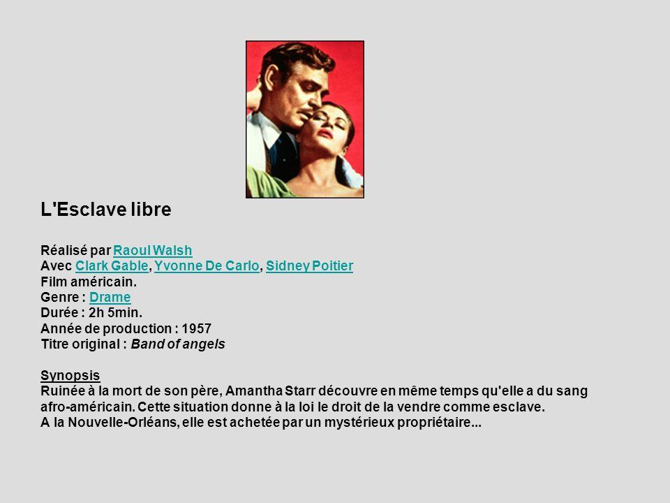 L Esclave libre Réalisé par Raoul Walsh