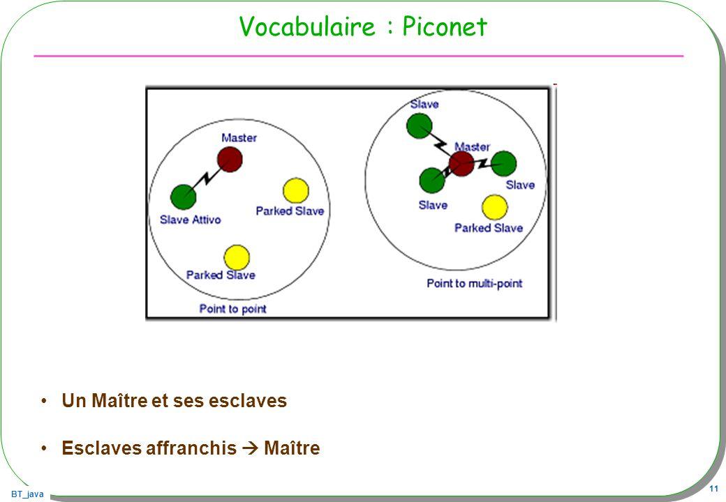 Vocabulaire : Piconet Un Maître et ses esclaves