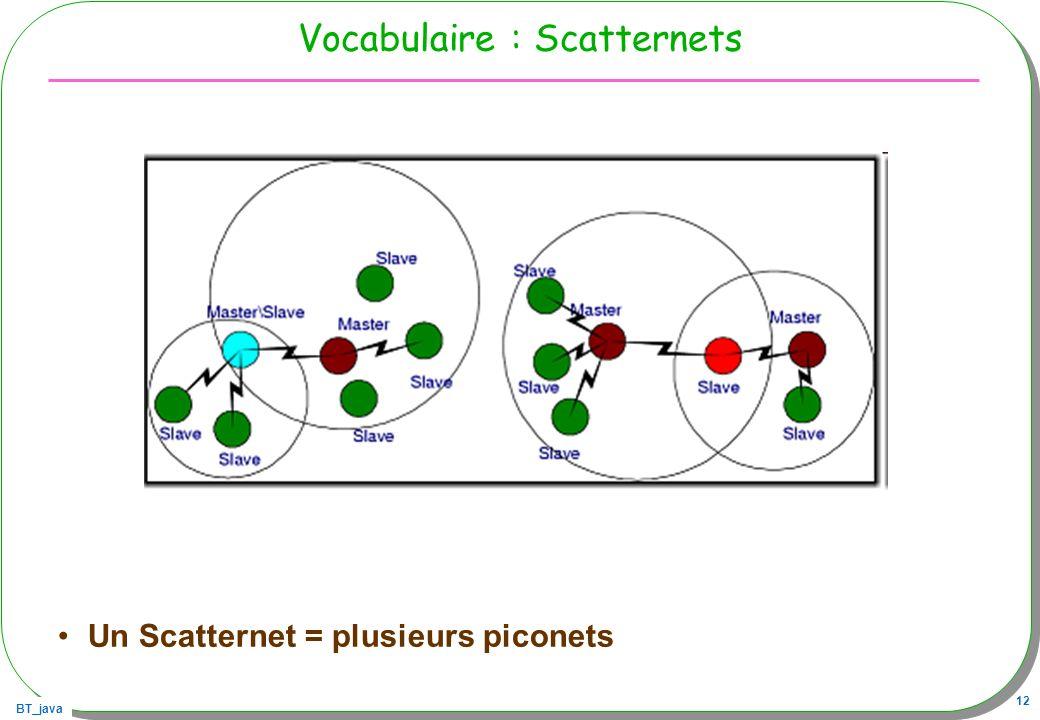 Vocabulaire : Scatternets