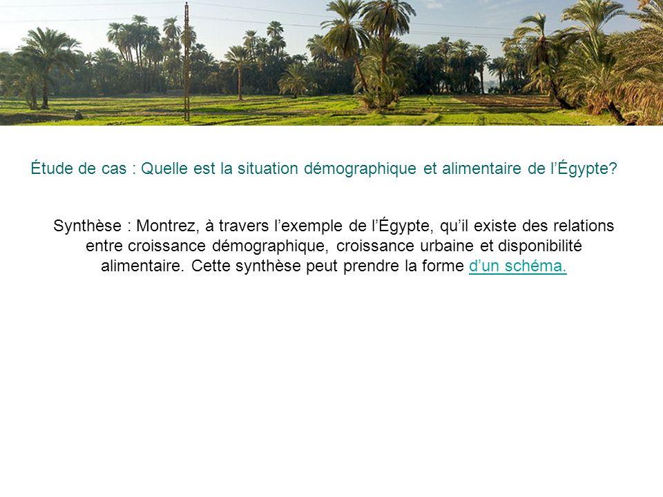 Étude de cas : Quelle est la situation démographique et alimentaire de l'Égypte