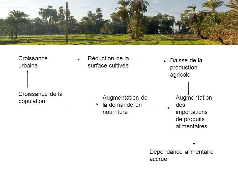 Croissance urbaine Réduction de la surface cultivée. Baisse de la production agricole. Croissance de la population.