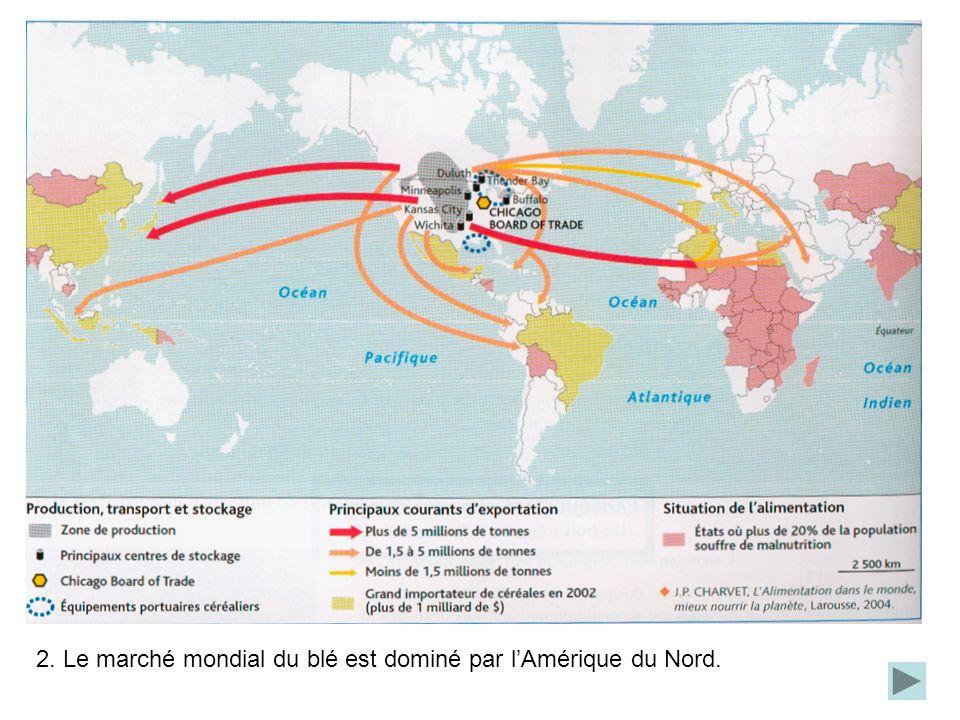 2. Le marché mondial du blé est dominé par l'Amérique du Nord.