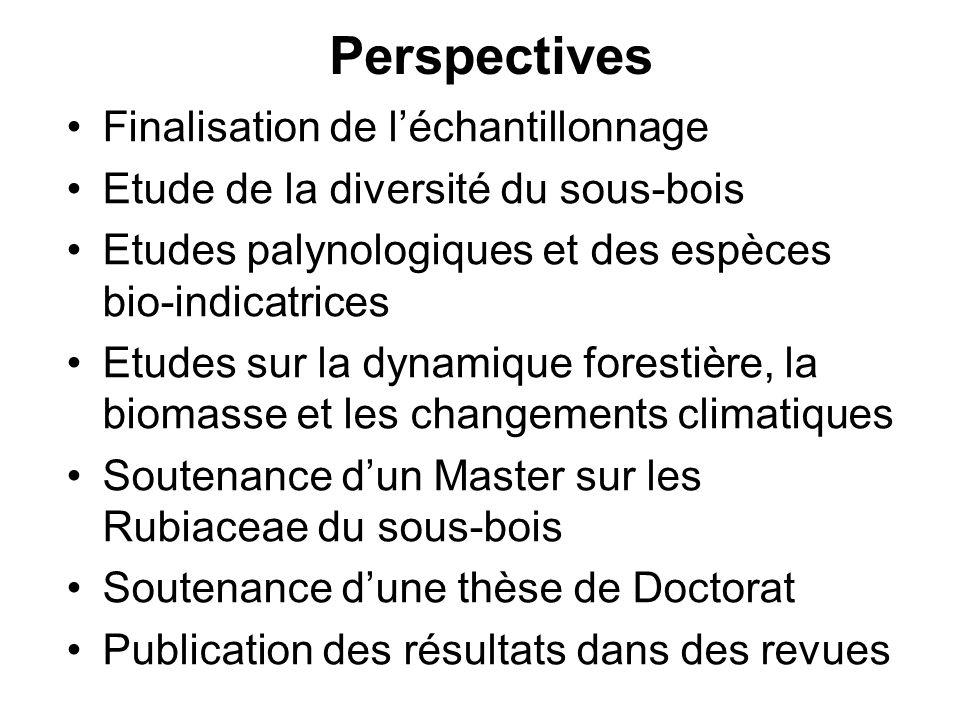 Perspectives Finalisation de l'échantillonnage